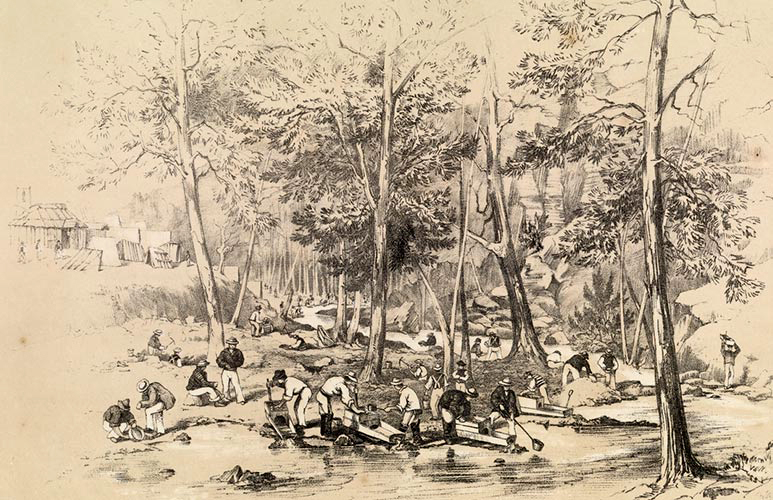 Drawing of gold diggings in Victoria