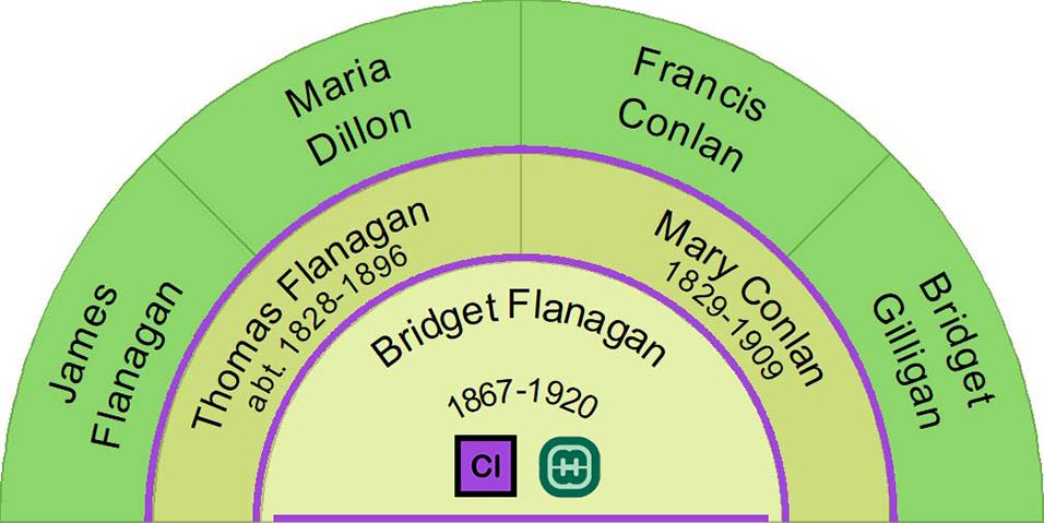 Bridget Flanagan Half Ancestor Fan Chart