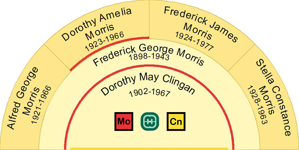 Children of Frederick and Dorothy born in New South Wales were Alfred, Dorothy, Frederick and Stella