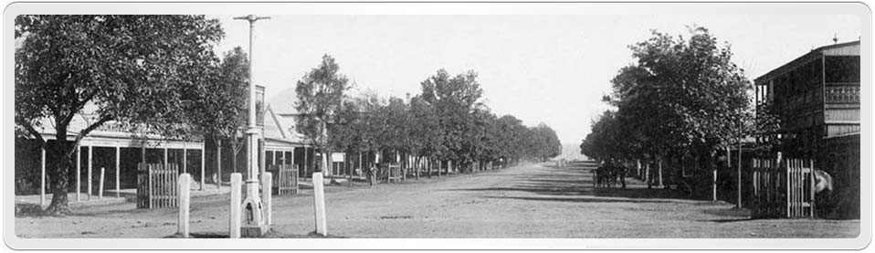 WebPage Header showing Prince Street Grafton Early Photograph