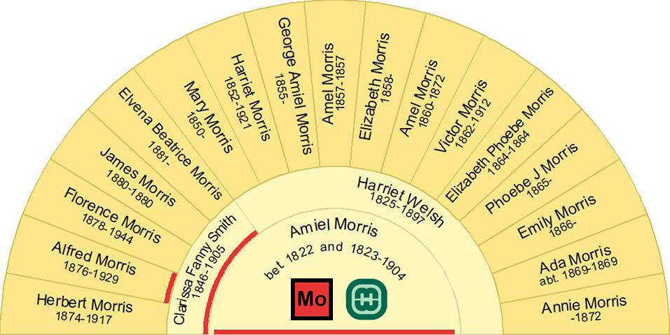 Half Fan Chart showing the Children of Amiel Morris with Harriet Welsh & Clarissa Fanny Smith