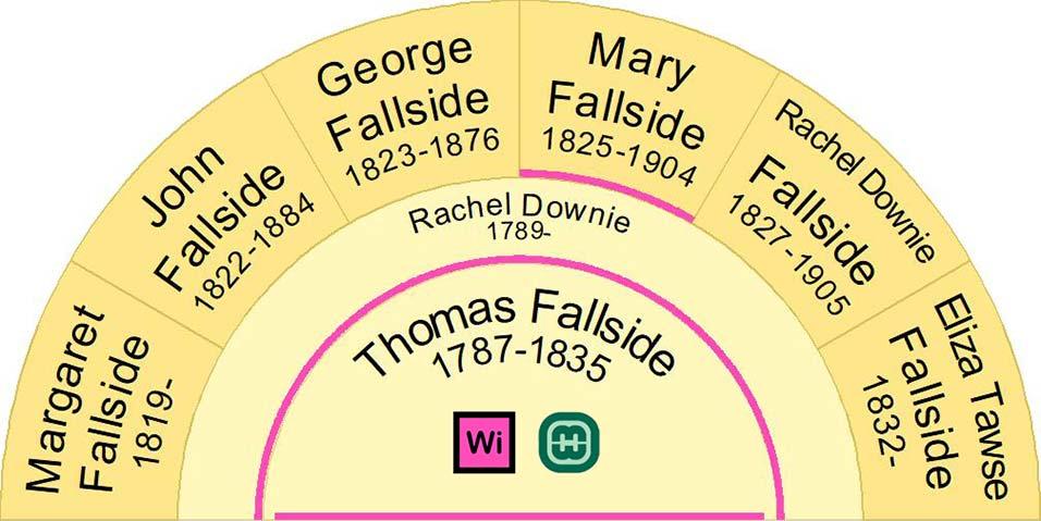 Half Fan Chart showing the Children of Thomas Fallside and Rachel Downie