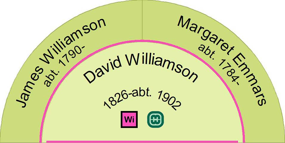Half fan chart showing the ancestors of David Williamson.