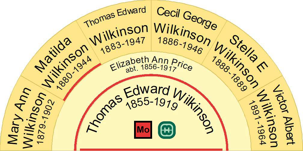 Half fan chart image showing the children of Thomas Edward Wilkinson & Elizabeth Ann Price