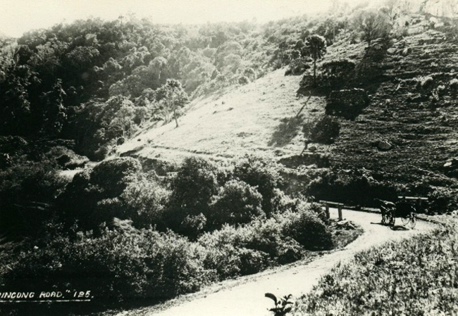 Early photo about 1850 of the Gerringong Road