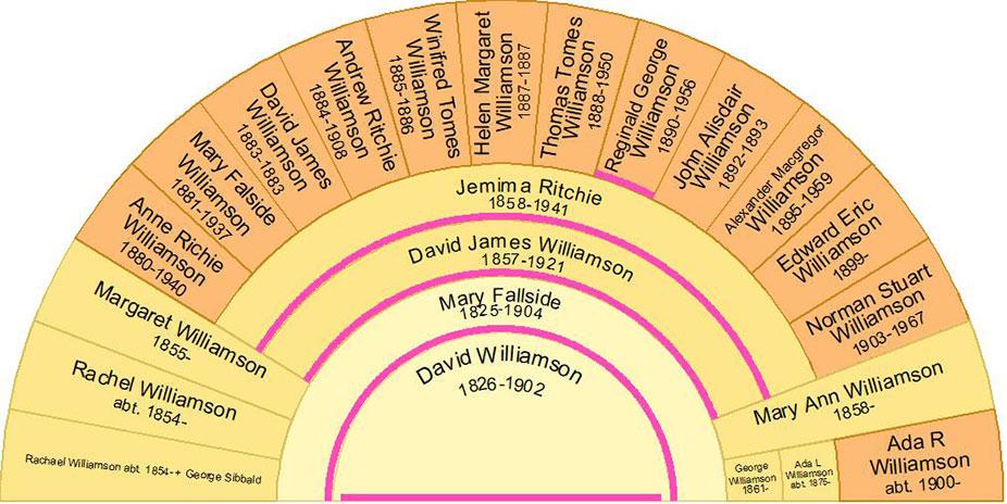 Descendant Fan Chart of David Williamson and Mary Fallside
