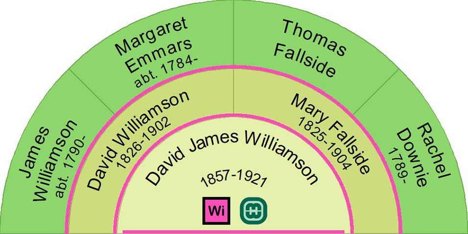 David James Williamson Ancestor Fan Chart showing three generations