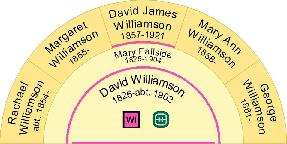 Fan Chart showing the children of David Williamson b1826 and Mary Fallside b1825