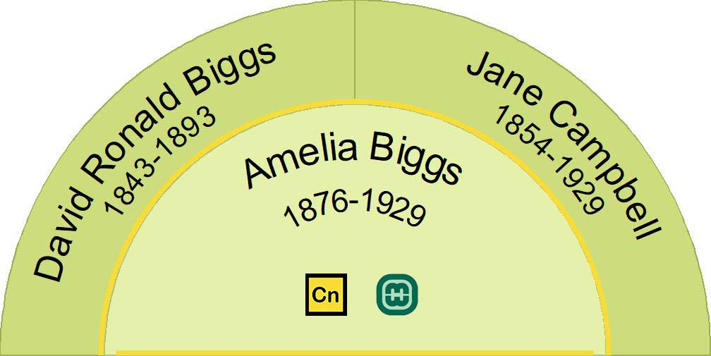 Half fan chart showing the direct ancestors, parents, of Amelia Biggs 1876-1929