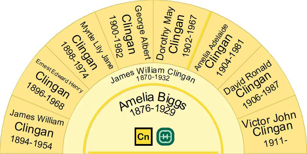 Half fan chart showing the children of Amelia Biggs & James William Clingan