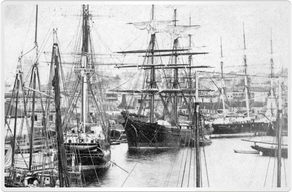 John Alexander Johnston and Mary Crawford arrived in Port Jackson, New South Wales on 6th January 1860. This generic picture of Circular Quay in 1869 from the State Library of New South Wales is used to illustrate their initial view of Sydney.